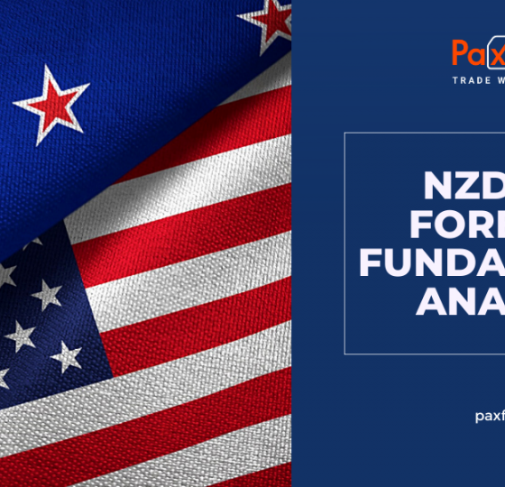 NZD/USD Forecast Fundamental Analysis | New Zealand Dollar / US Dollar1