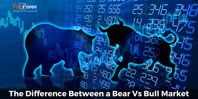 The Difference Between a Bear Vs Bull Market